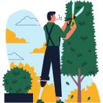 assegno per il lavoro: manutenzione verde