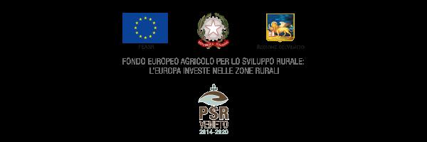 banner-loghi.istituzionali