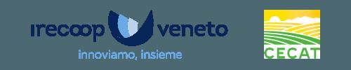 logo-header-web-v2