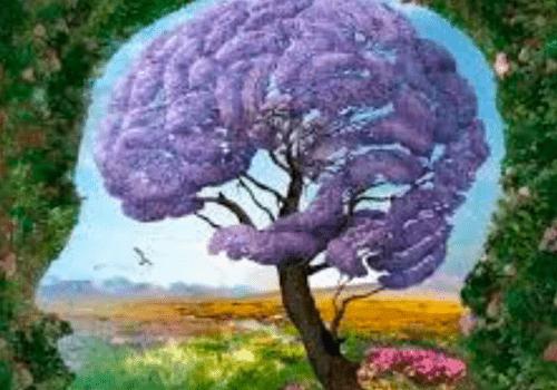 PSICOLOGIA EPIGENETICA come pensieri ed emozioni influenzano la realtà